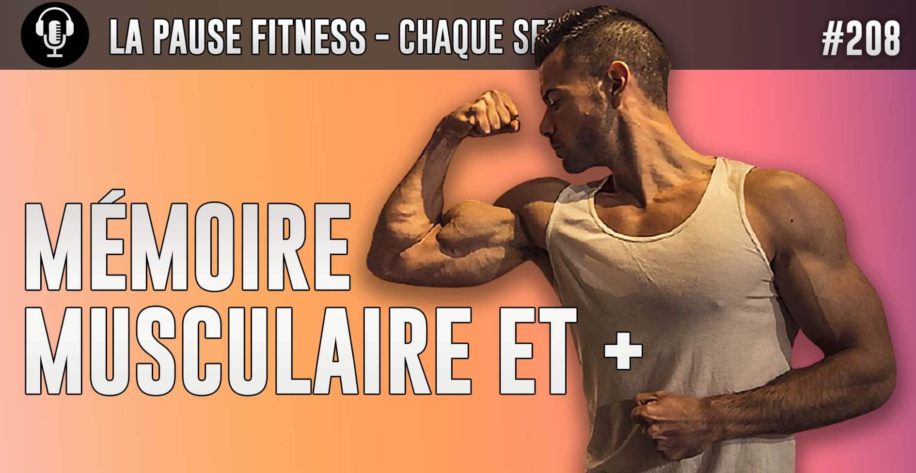 Mémoire musculaire, musculature, attirance et santé métabolique