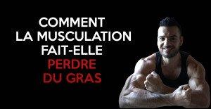🔒 Perdre du gras grâce à la musculation