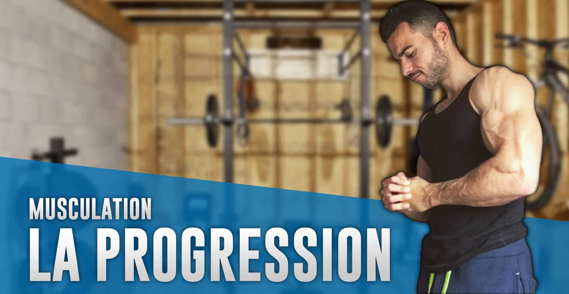 progression musculation