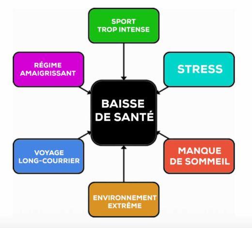 santé sportif