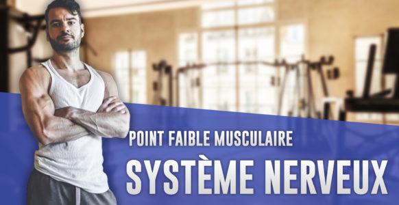 Système nerveux : le comprendre pour développer un point faible musculaire