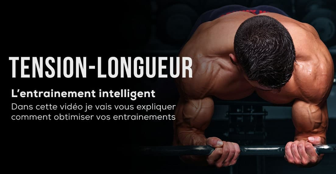 tension longueur musculation