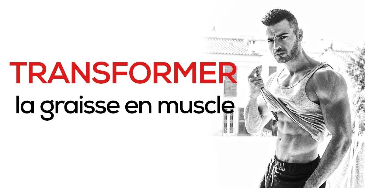 transformer la graisse en muscle